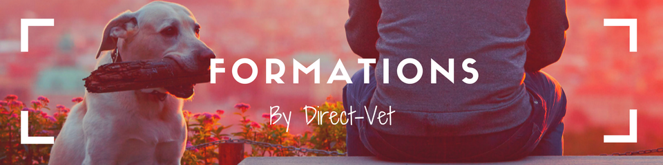 Formation par Direct-Vet